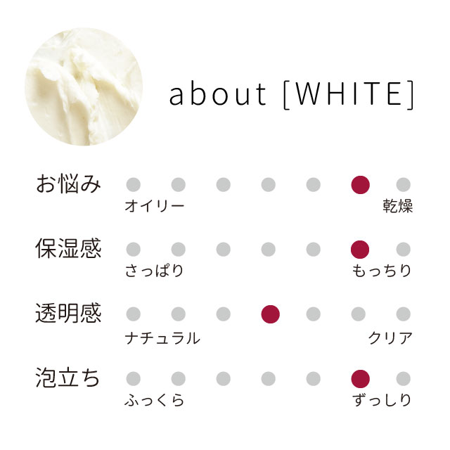 hfs_white_guide_02