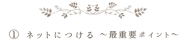awa_title1